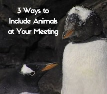 3 Ways to Include Animals at Your Meeting - Newport Aquarium